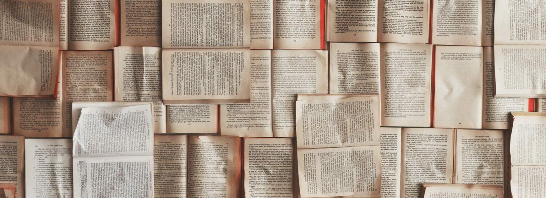 Blog studia-doktoranckie